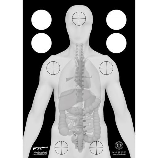 Tarcza strzelecka anatomia 49,5cm X 69,5cm